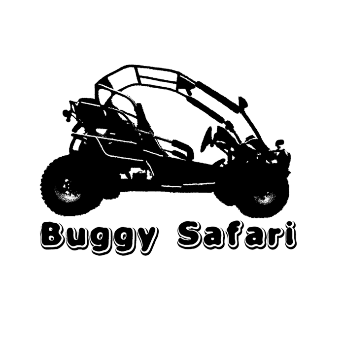 logo buggysafari3